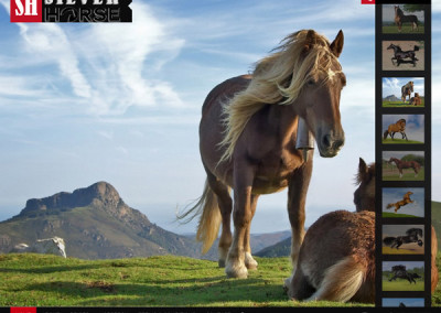 Silver Horse London